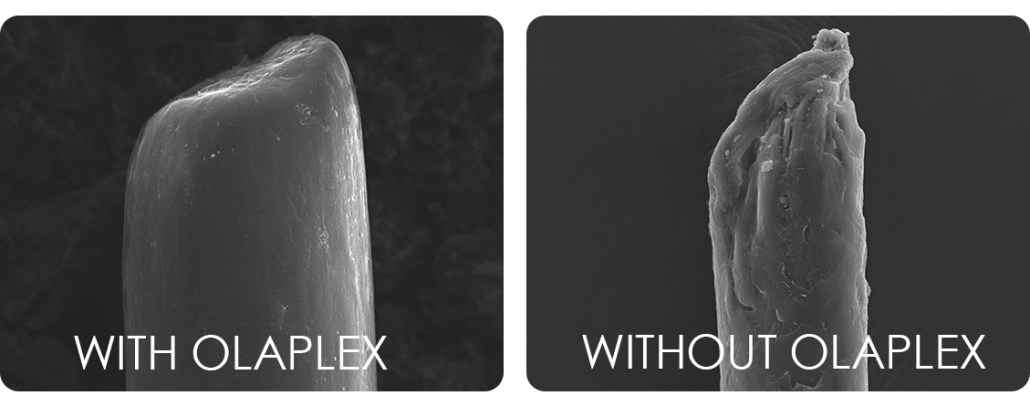 Hair under microscope with and without Olapex